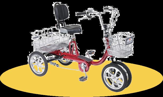 Universal bicycle
